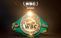 wbc awards 2020 best of tyson fury boxer of the year female knockout top 5 p4p